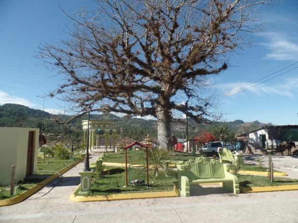 EL CEIBO. PARQUE DE SANTA CRUZ